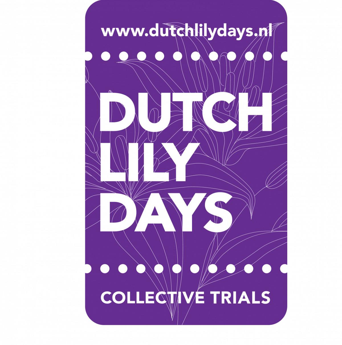 Dutch Lily Days     2-5 June